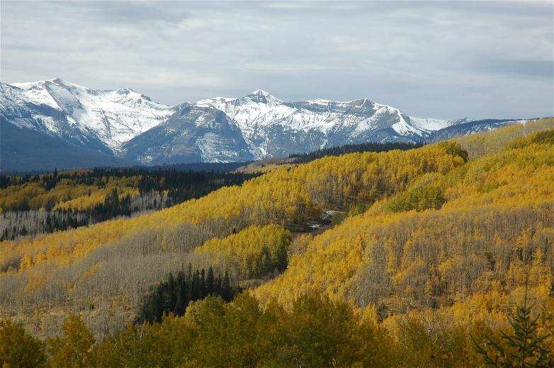 2006-10-6_Colorado_Fall_Trip_Aspen_030.jpg