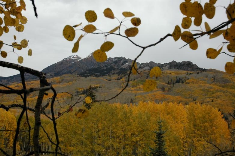 2006-10-6_Colorado_Fall_Trip_Aspen_352.jpg