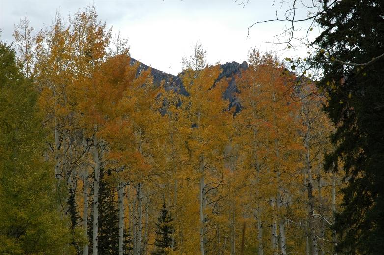 2006-10-6_Colorado_Fall_Trip_Aspen_378.jpg